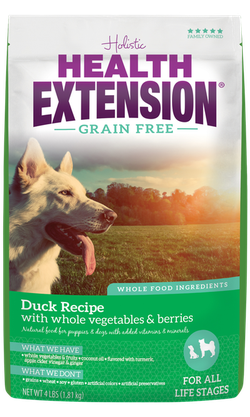 Grain Free Duck Recipe