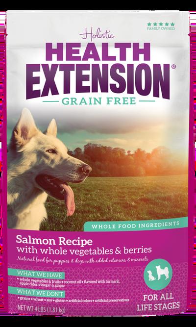 Grain Free Salmon Recipe