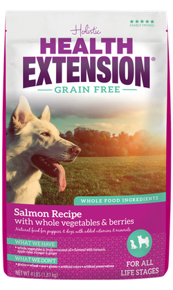 Grain Free Salmon Recipe